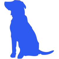 blue-dog-video-icon